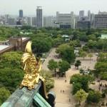 大阪城 (30)